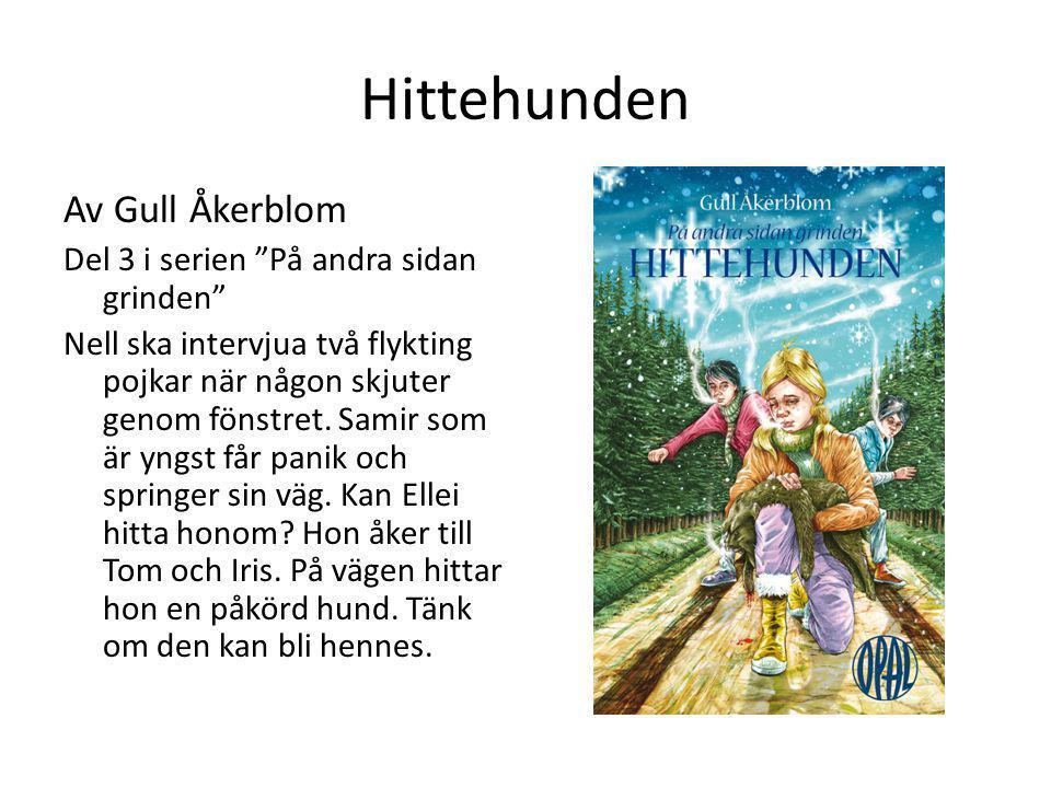 Hittehunden Av Gull Åkerblom Del 3 i serien På andra sidan grinden
