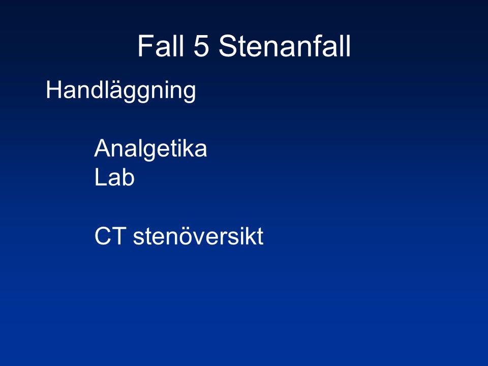 Fall 5 Stenanfall Handläggning Analgetika Lab CT stenöversikt