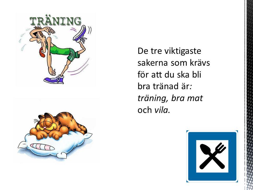 De tre viktigaste sakerna som krävs för att du ska bli bra tränad är: träning, bra mat och vila.