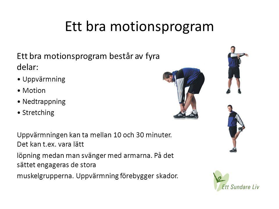 Ett bra motionsprogram