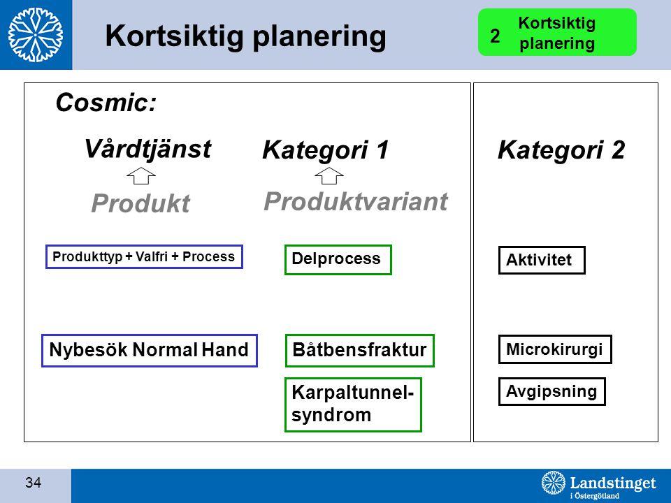 Kortsiktig planering Cosmic: Vårdtjänst Kategori 1 Kategori 2 Produkt