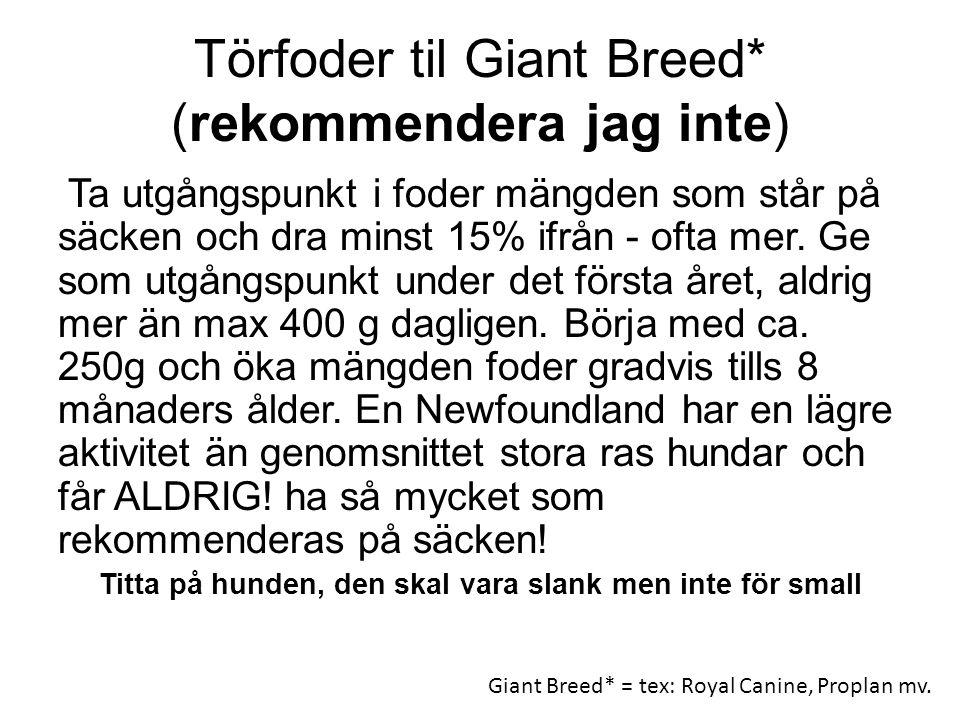Törfoder til Giant Breed* (rekommendera jag inte)