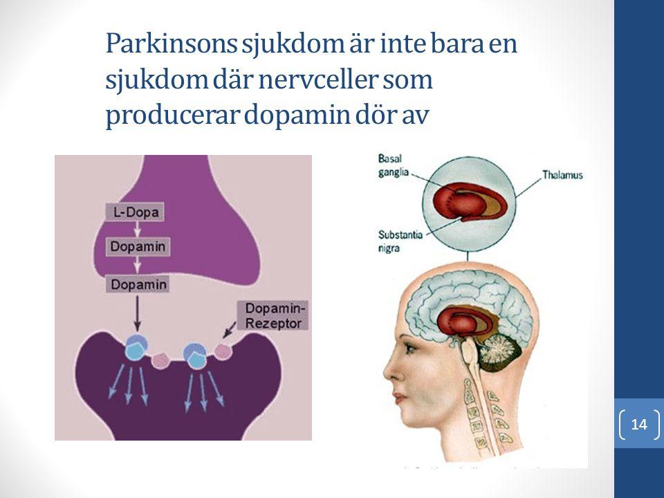 Parkinsons sjukdom är inte bara en sjukdom där nervceller som producerar dopamin dör av