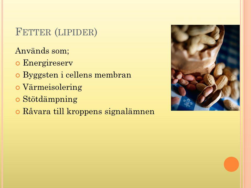 Fetter (lipider) Används som; Energireserv Byggsten i cellens membran