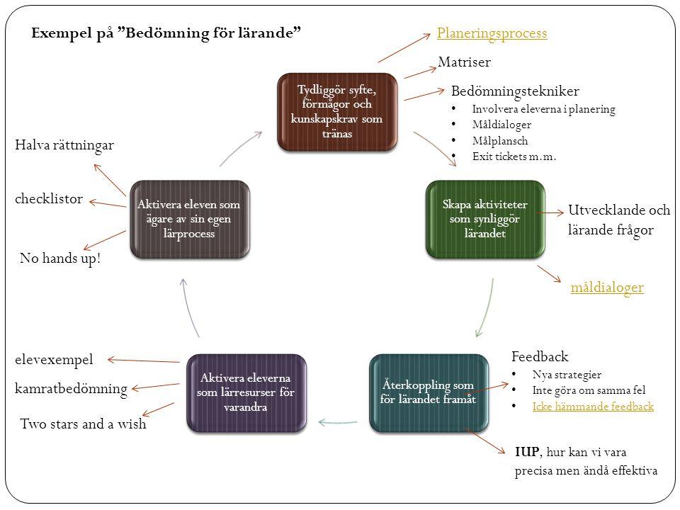 Exempel på Bedömning för lärande Planeringsprocess