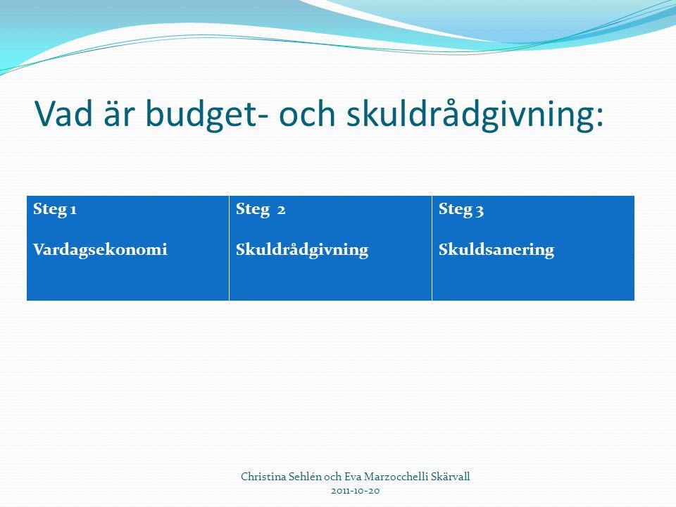 Vad är budget- och skuldrådgivning:
