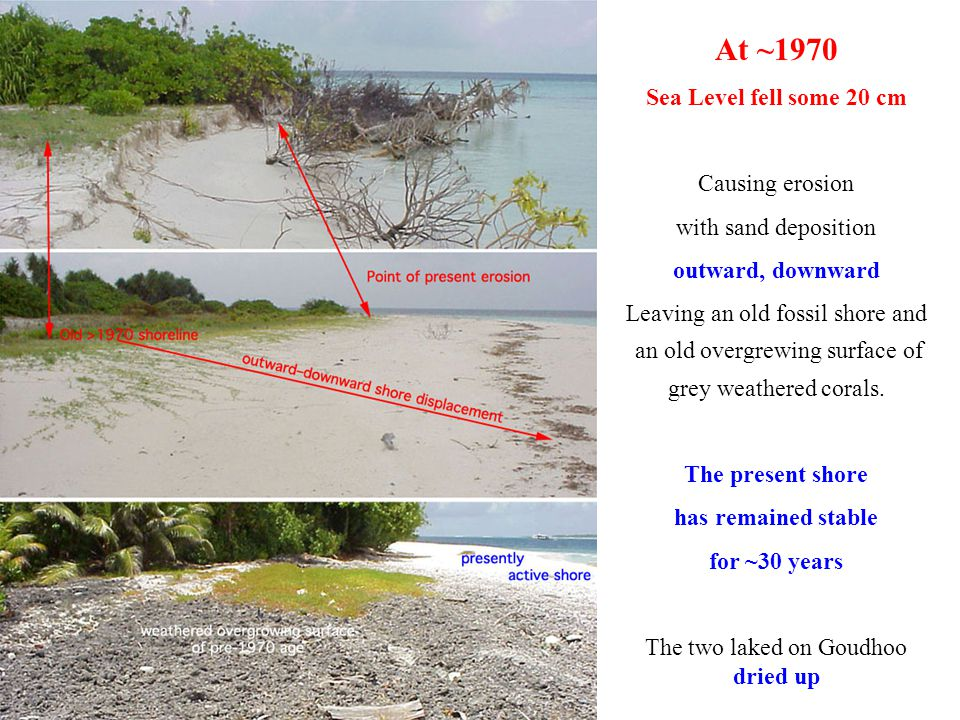At ~1970 Sea Level fell some 20 cm Causing erosion