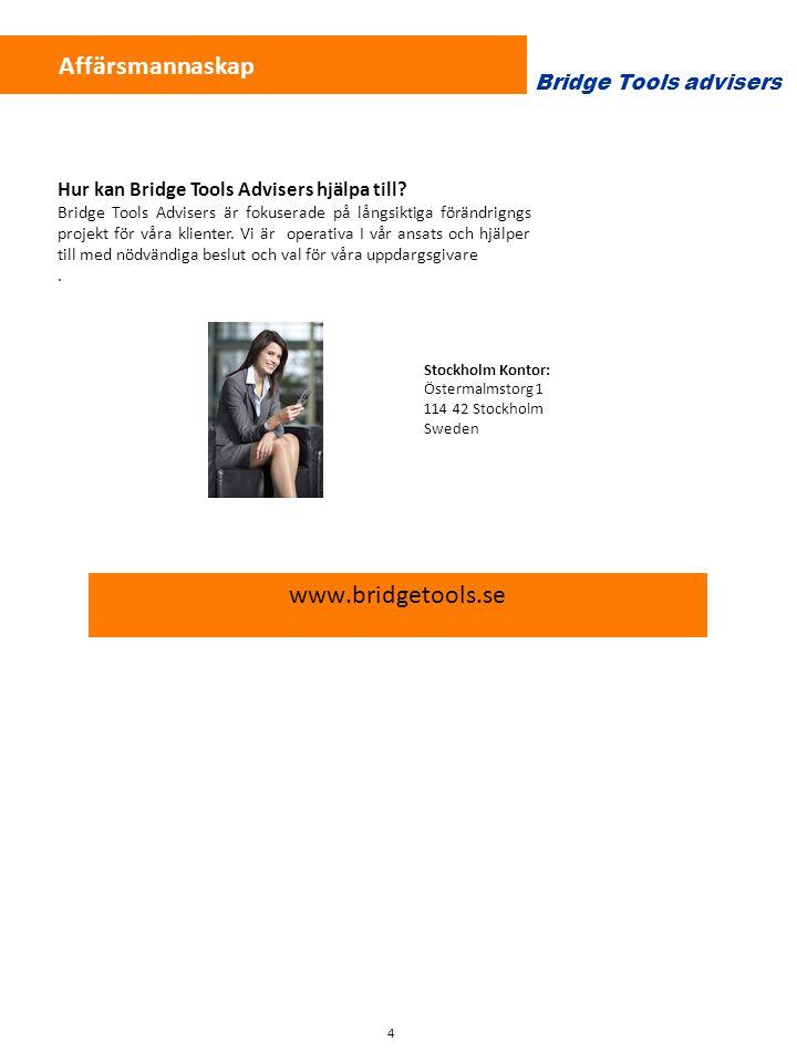Affärsmannaskap www.bridgetools.se Bridge Tools advisers