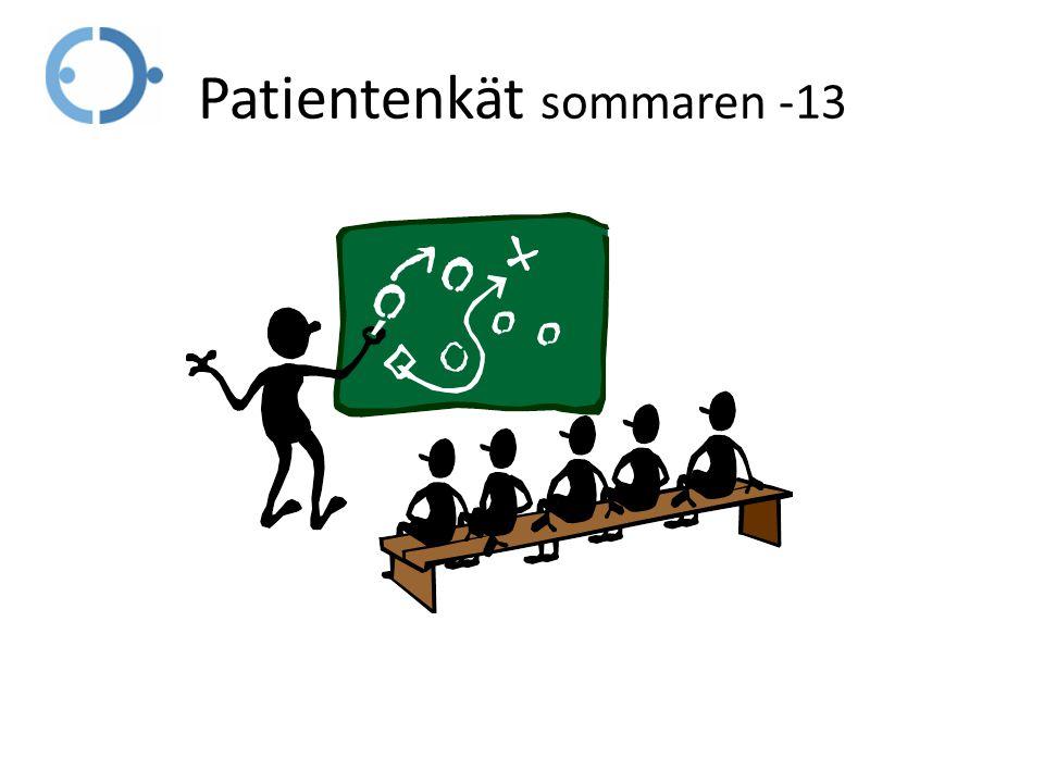 Patientenkät sommaren -13