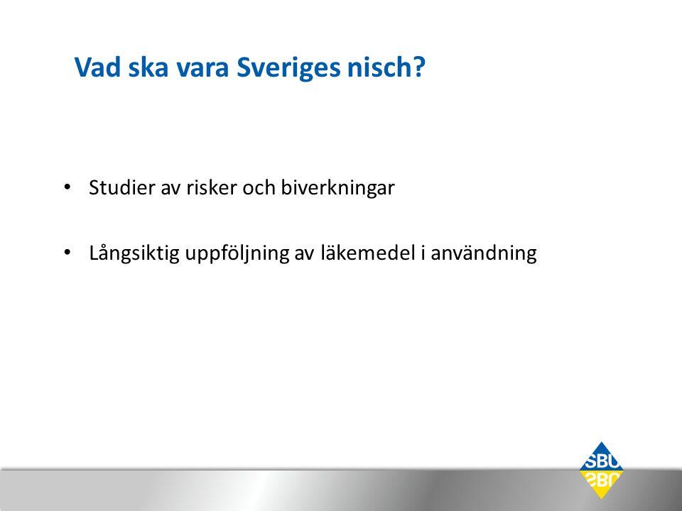 Vad ska vara Sveriges nisch