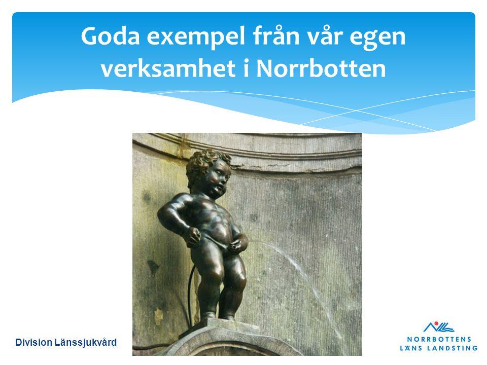 Goda exempel från vår egen verksamhet i Norrbotten