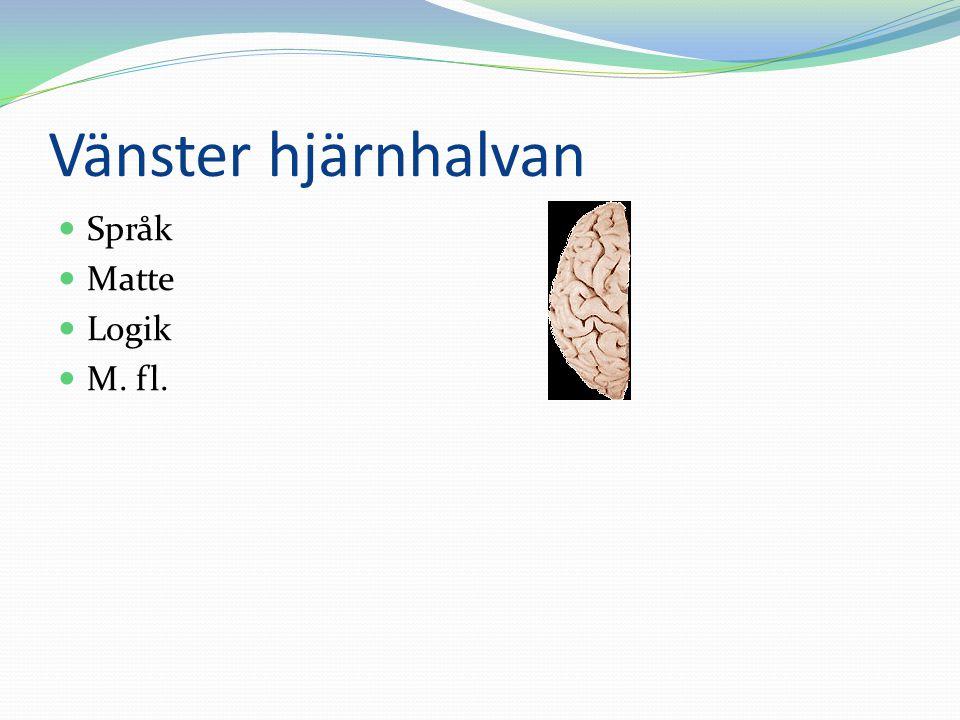 Vänster hjärnhalvan Språk Matte Logik M. fl.