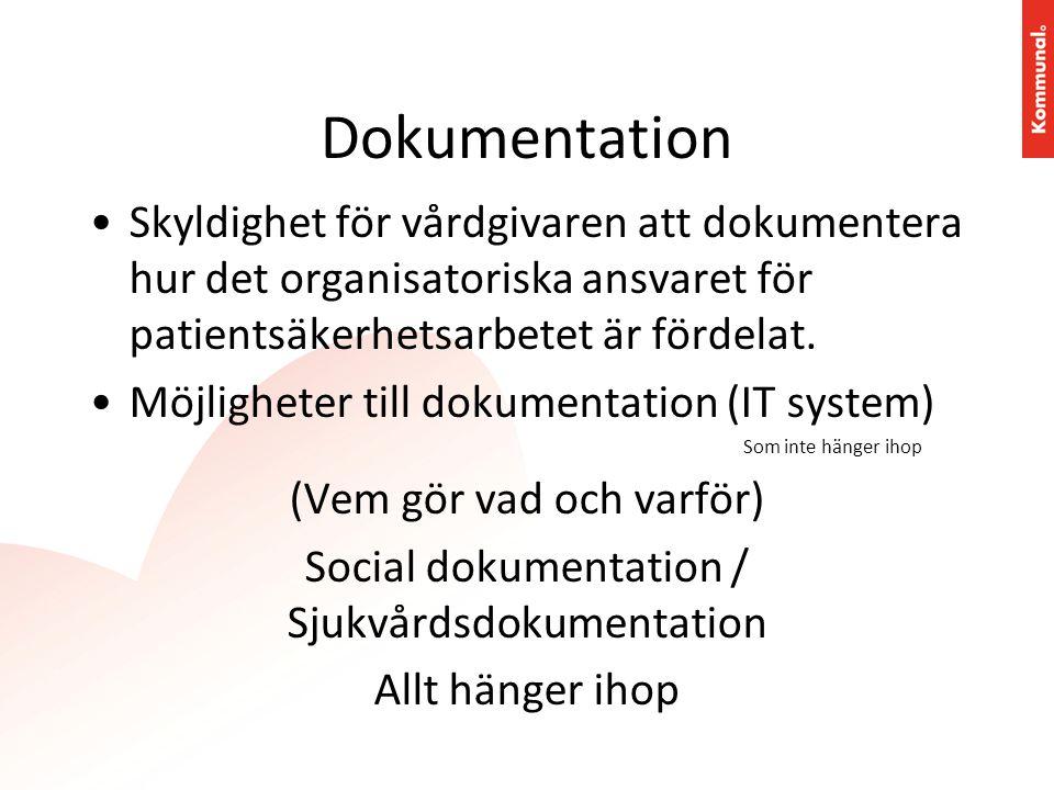 Dokumentation Skyldighet för vårdgivaren att dokumentera hur det organisatoriska ansvaret för patientsäkerhetsarbetet är fördelat.