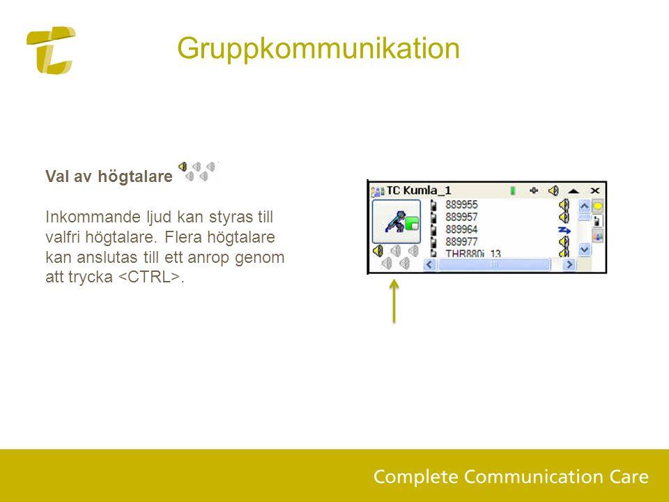 Gruppkommunikation Val av högtalare