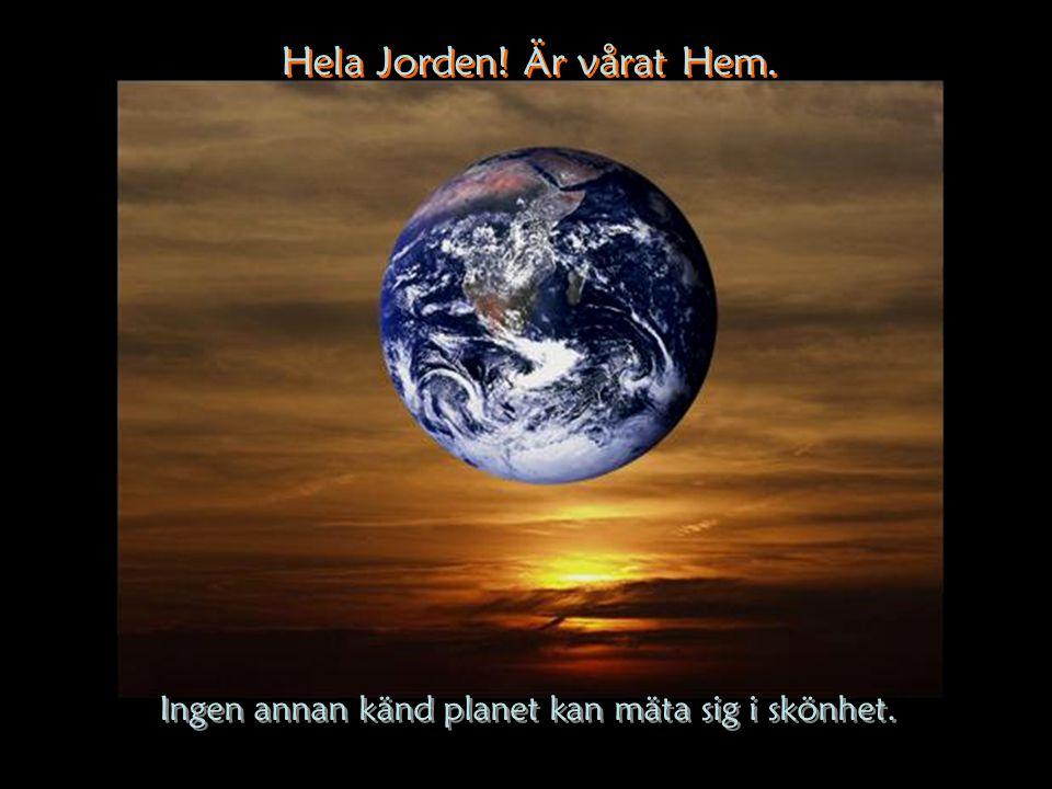 Hela Jorden! Är vårat Hem.