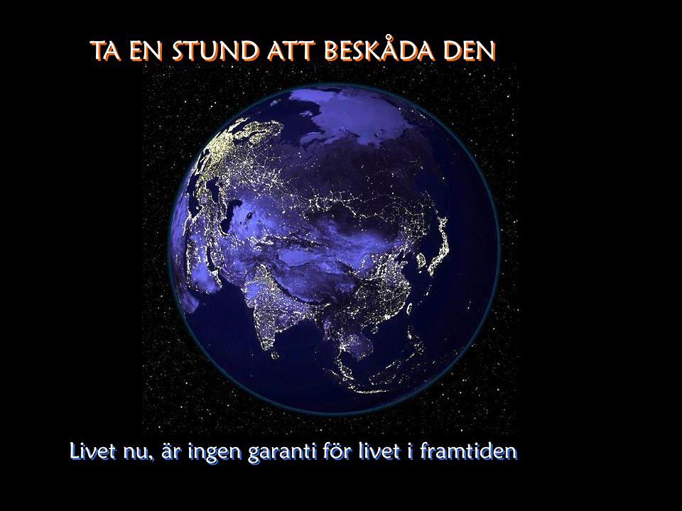 TA EN STUND ATT BESKÅDA DEN