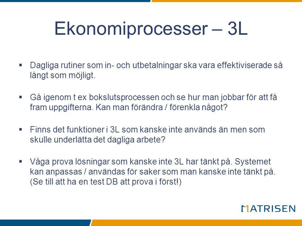 Ekonomiprocesser – 3L Dagliga rutiner som in- och utbetalningar ska vara effektiviserade så långt som möjligt.