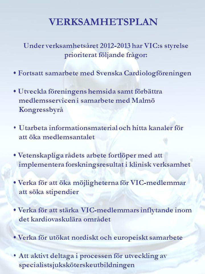 VERKSAMHETSPLAN Under verksamhetsåret 2012-2013 har VIC:s styrelse prioriterat följande frågor: