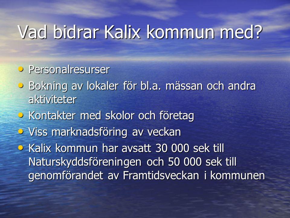 Vad bidrar Kalix kommun med