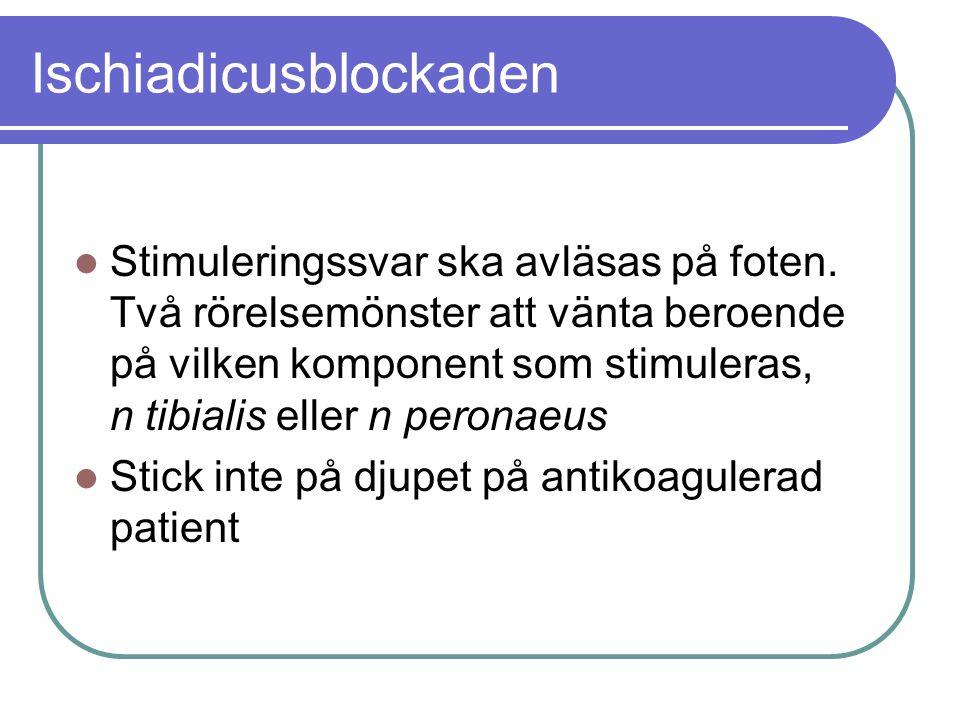 Ischiadicusblockaden