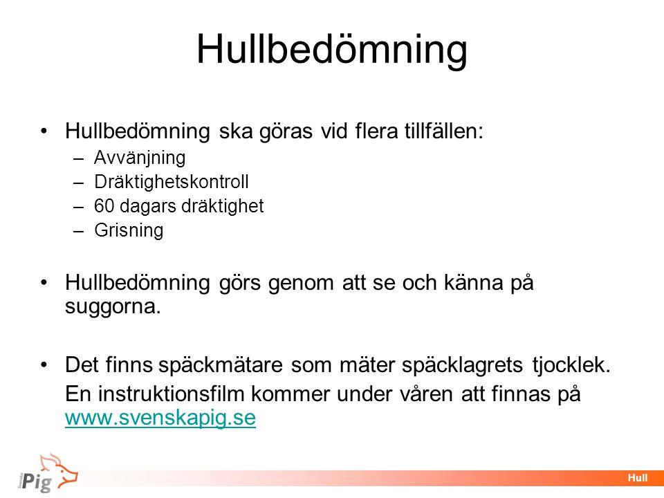 Hullbedömning Hullbedömning ska göras vid flera tillfällen: