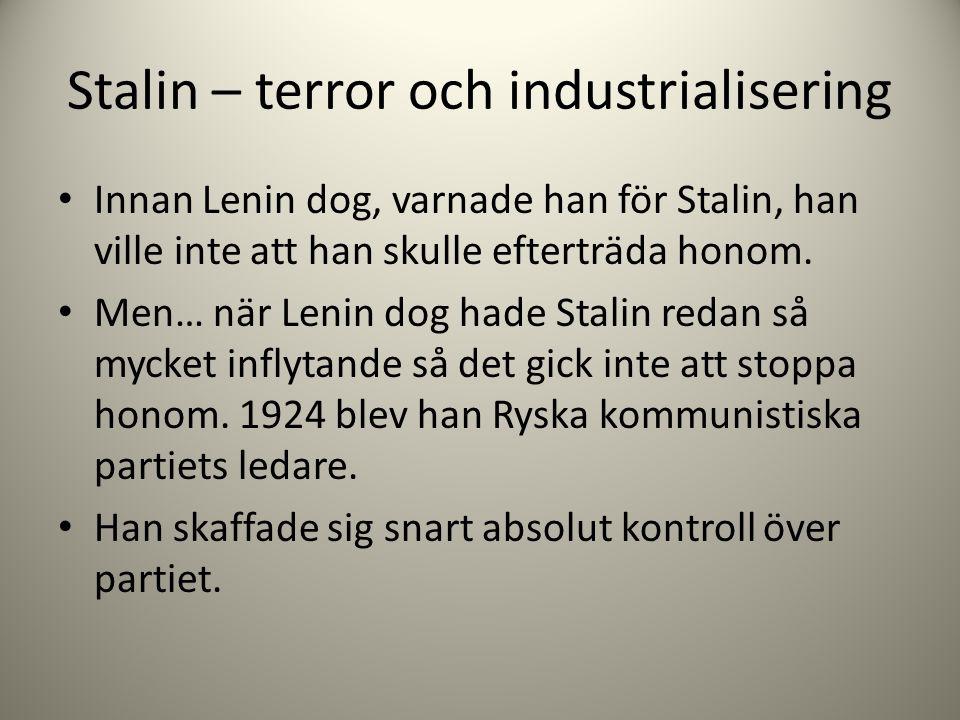 Stalin – terror och industrialisering