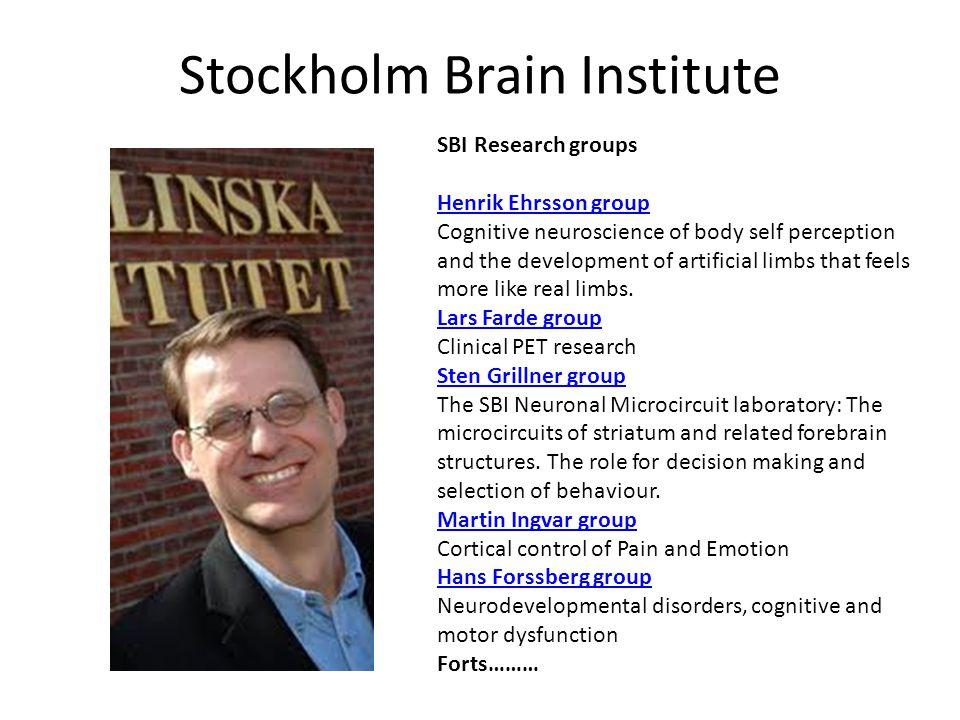 Stockholm Brain Institute