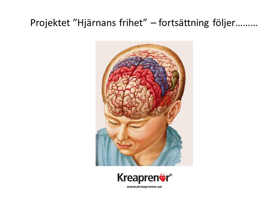 Projektet Hjärnans frihet – fortsättning följer………