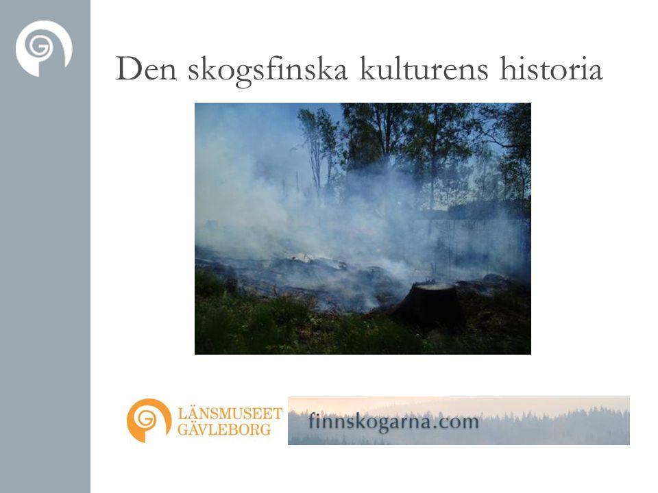 Den skogsfinska kulturens historia