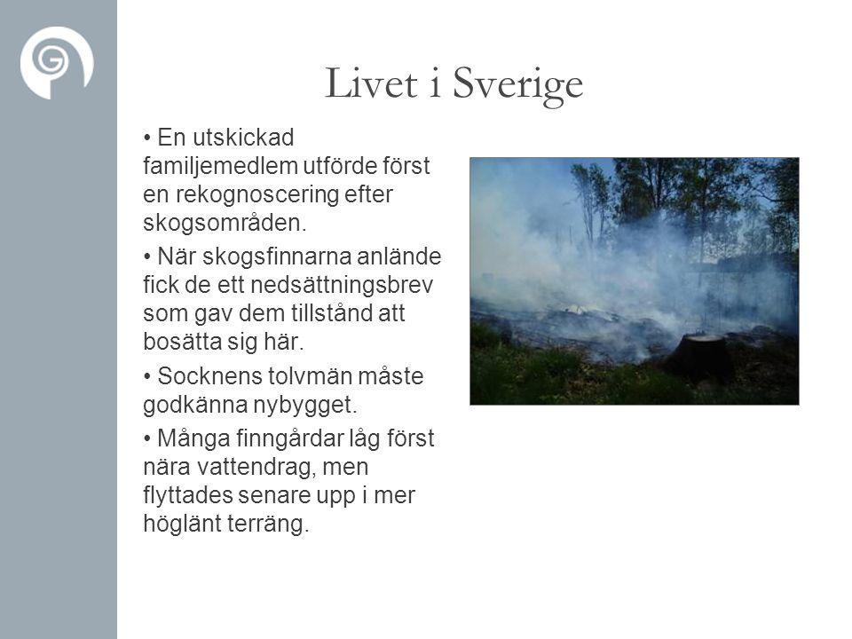 Livet i Sverige En utskickad familjemedlem utförde först en rekognoscering efter skogsområden.