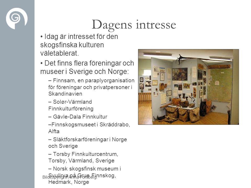 Dagens intresse Idag är intresset för den skogsfinska kulturen väletablerat. Det finns flera föreningar och museer i Sverige och Norge: