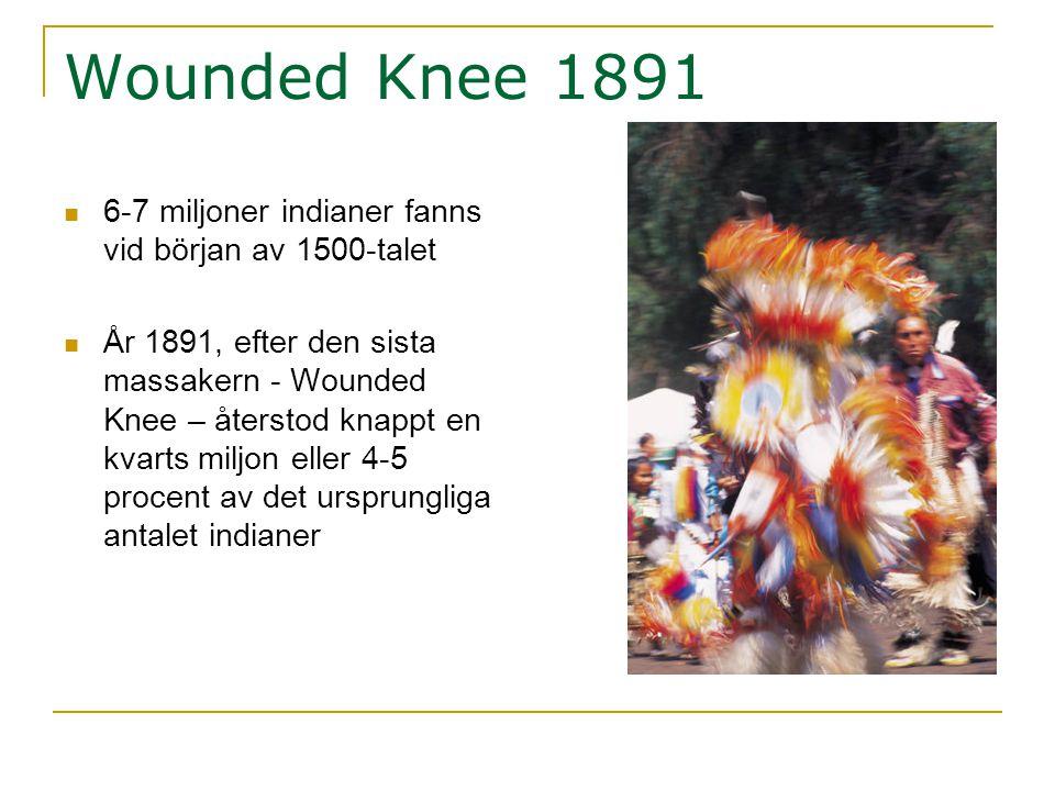 Wounded Knee 1891 6-7 miljoner indianer fanns vid början av 1500-talet