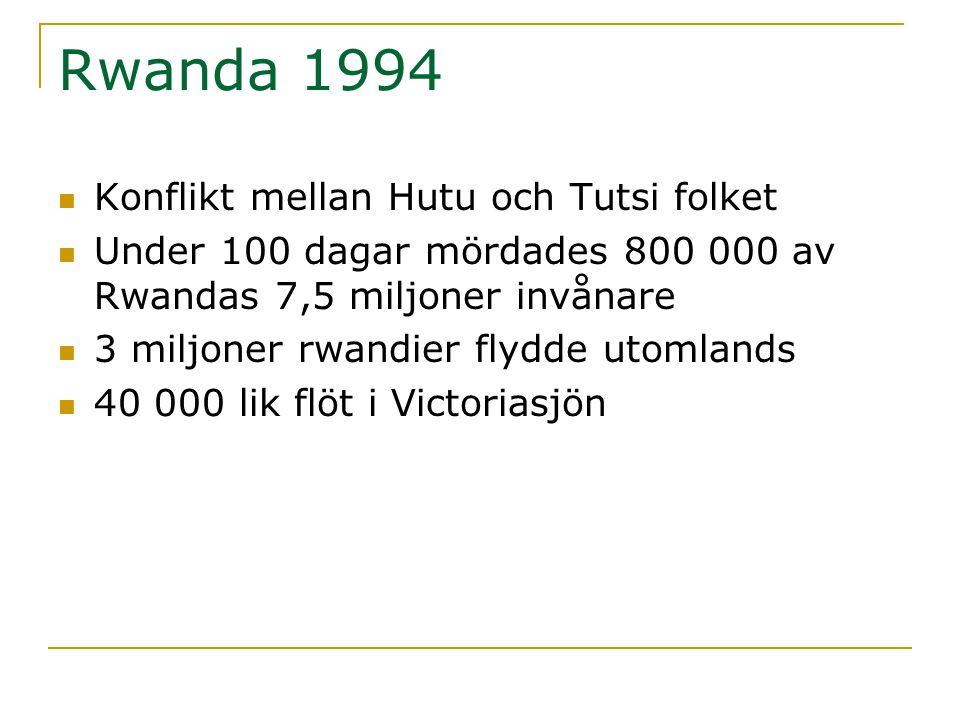 Rwanda 1994 Konflikt mellan Hutu och Tutsi folket