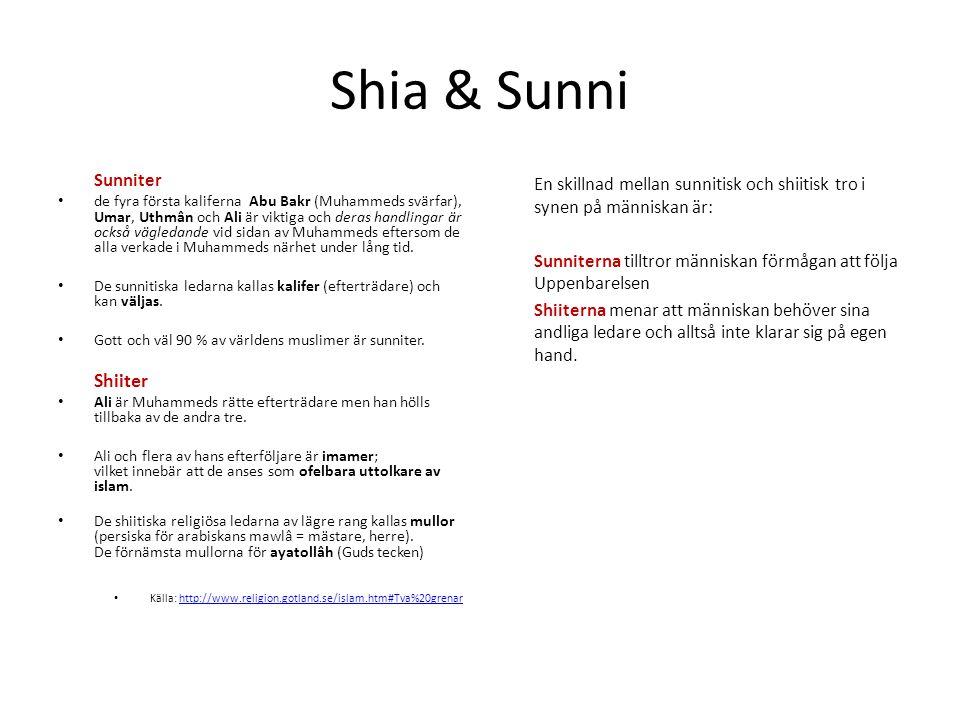 Shia & Sunni Sunniter.