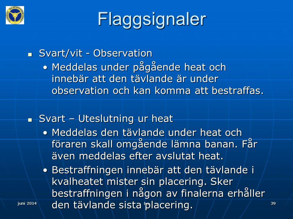 Flaggsignaler Svart/vit - Observation