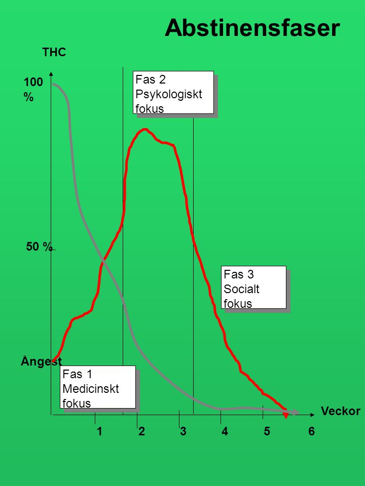 Abstinensfaser THC 100 % Fas 2 Psykologiskt fokus 50 % Fas 3