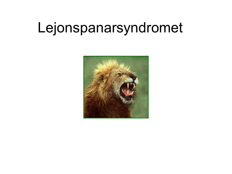 Lejonspanarsyndromet