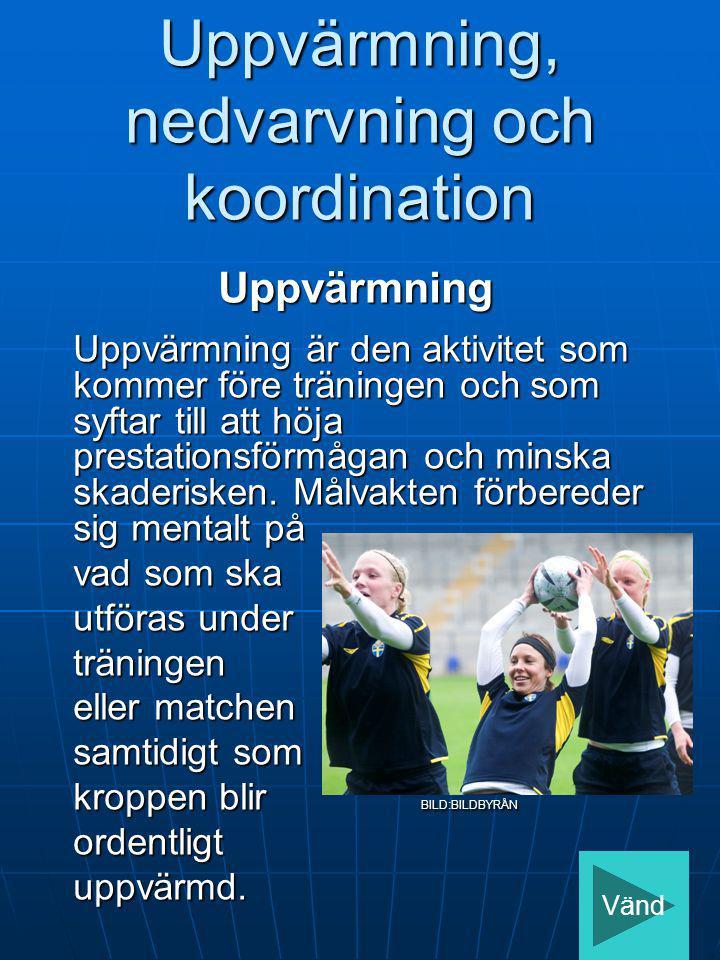 Uppvärmning, nedvarvning och koordination