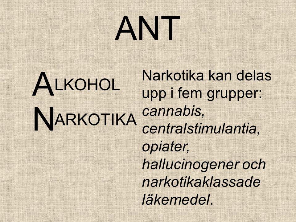 ANT A. Narkotika kan delas upp i fem grupper: cannabis, centralstimulantia, opiater, hallucinogener och narkotikaklassade läkemedel.