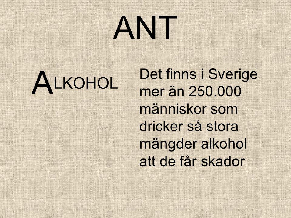 ANT A. Det finns i Sverige mer än 250.000 människor som dricker så stora mängder alkohol att de får skador.