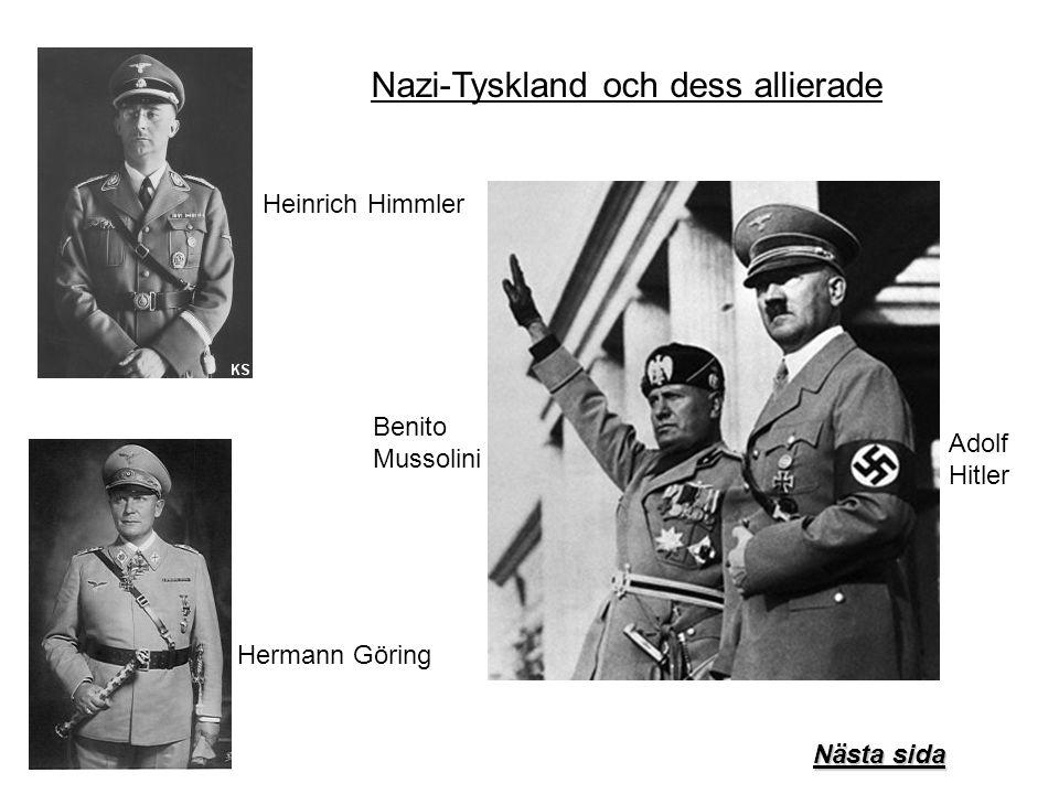 Nazi-Tyskland och dess allierade