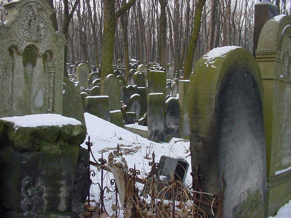 Varför är gravarna så misskötta