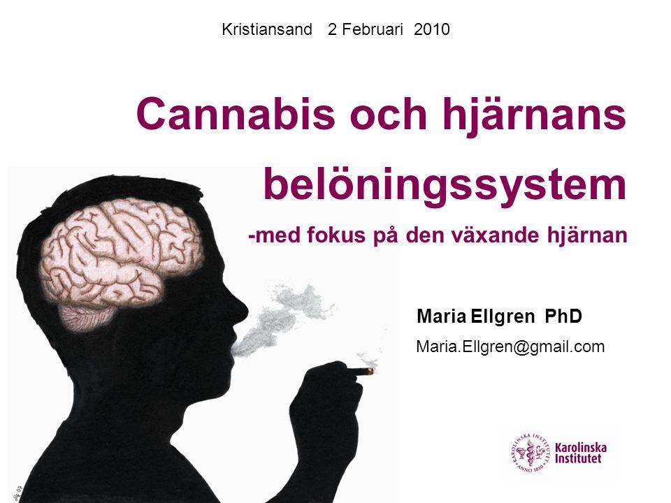 Kristiansand 2 Februari 2010