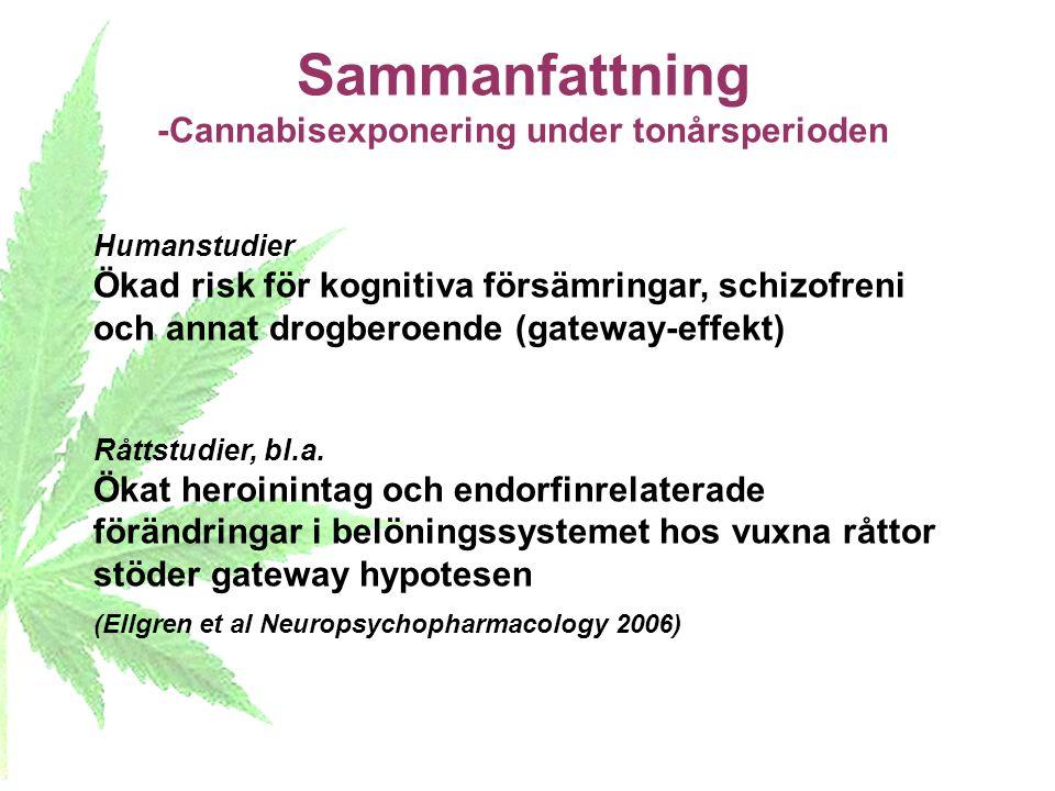Sammanfattning -Cannabisexponering under tonårsperioden