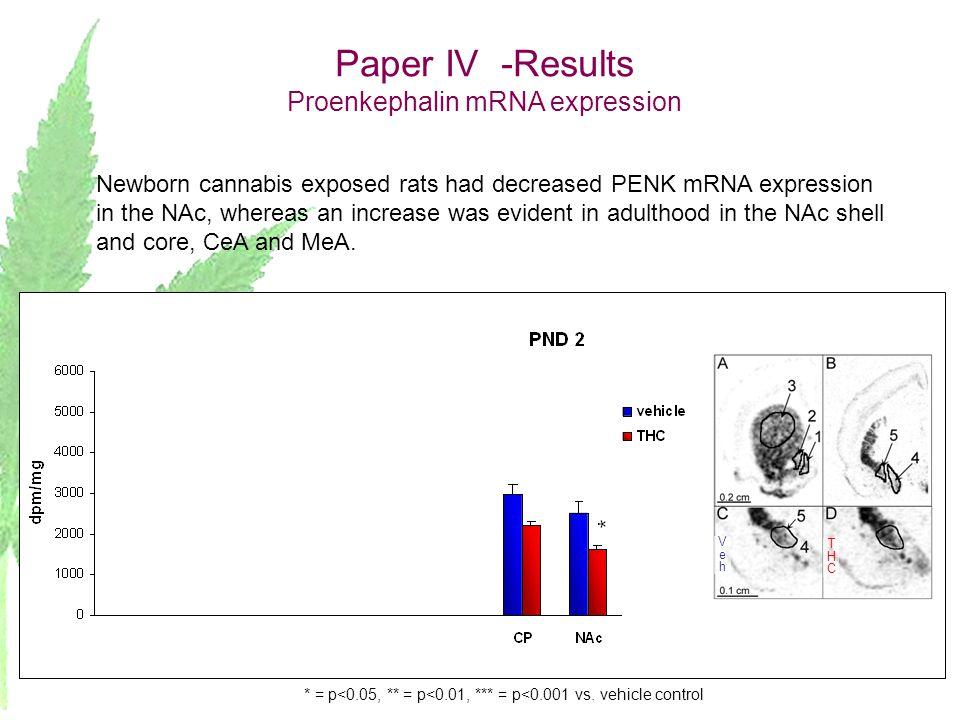 Paper IV -Results Proenkephalin mRNA expression