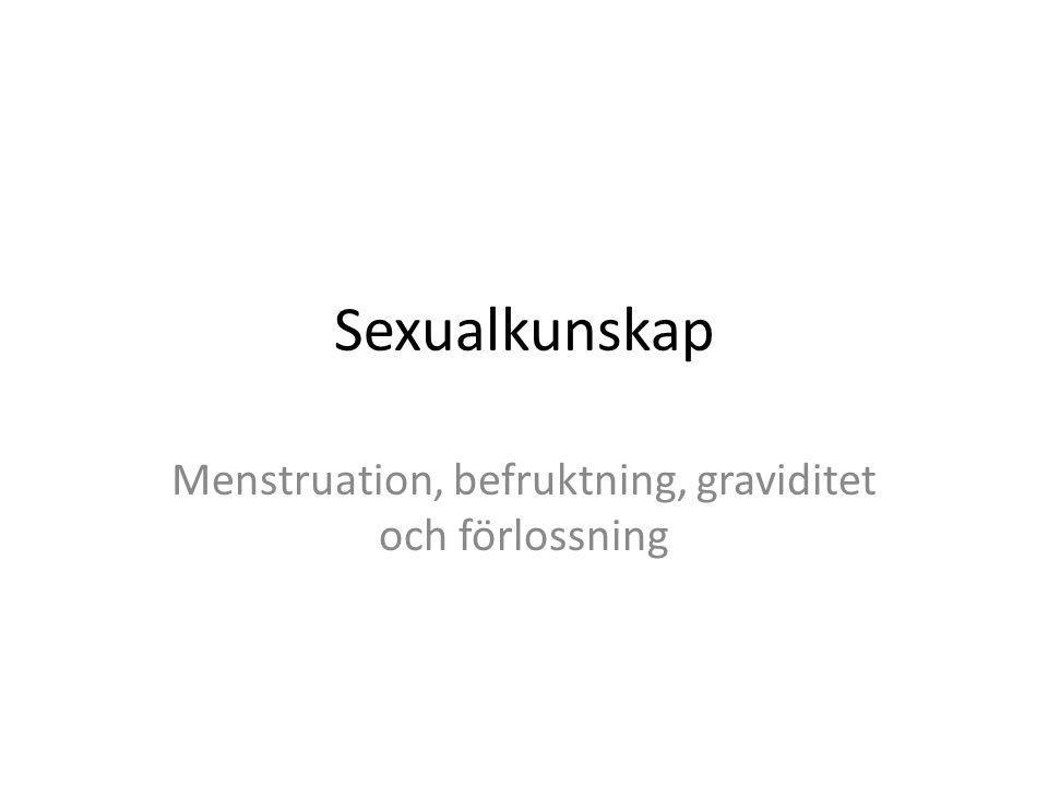 Menstruation, befruktning, graviditet och förlossning