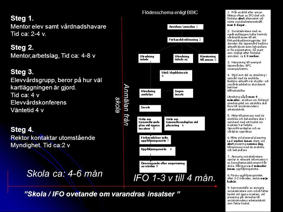 Skola ca: 4-6 mån IFO 1-3 v till 4 mån. Steg 1. Steg 2. Steg 3.