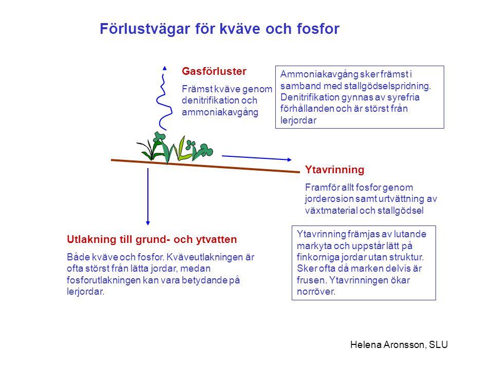 Förlustvägar för kväve och fosfor