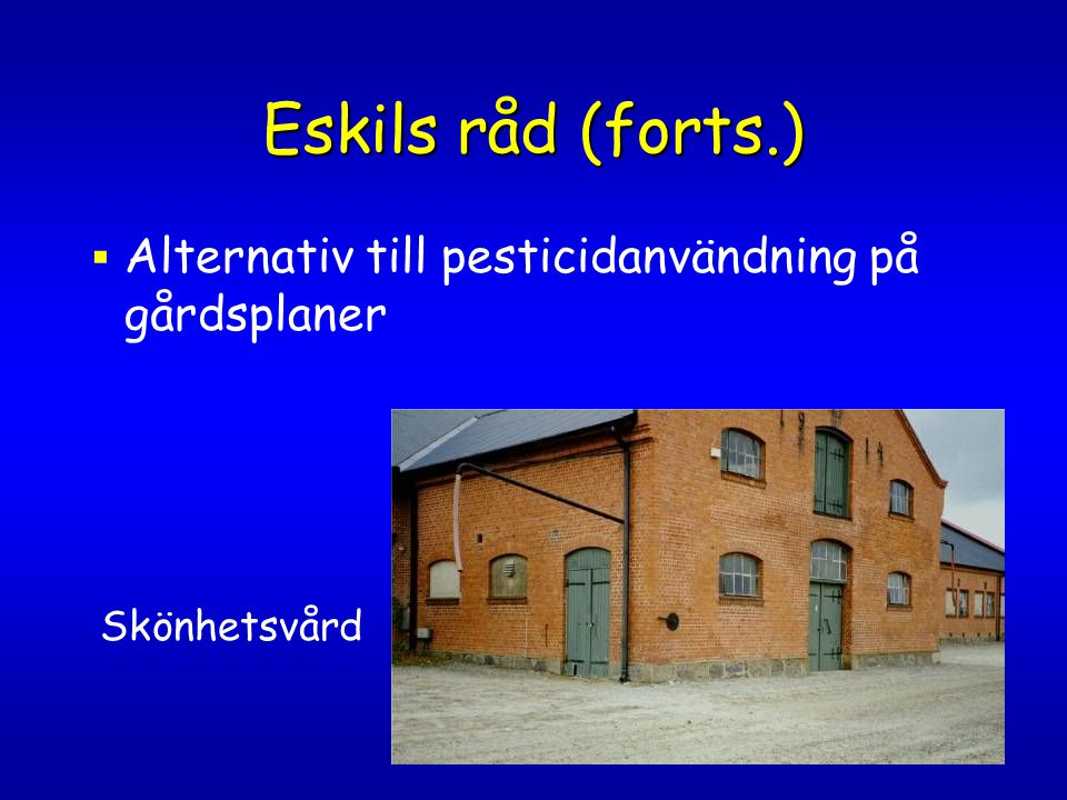 Eskils råd (forts.) Alternativ till pesticidanvändning på gårdsplaner