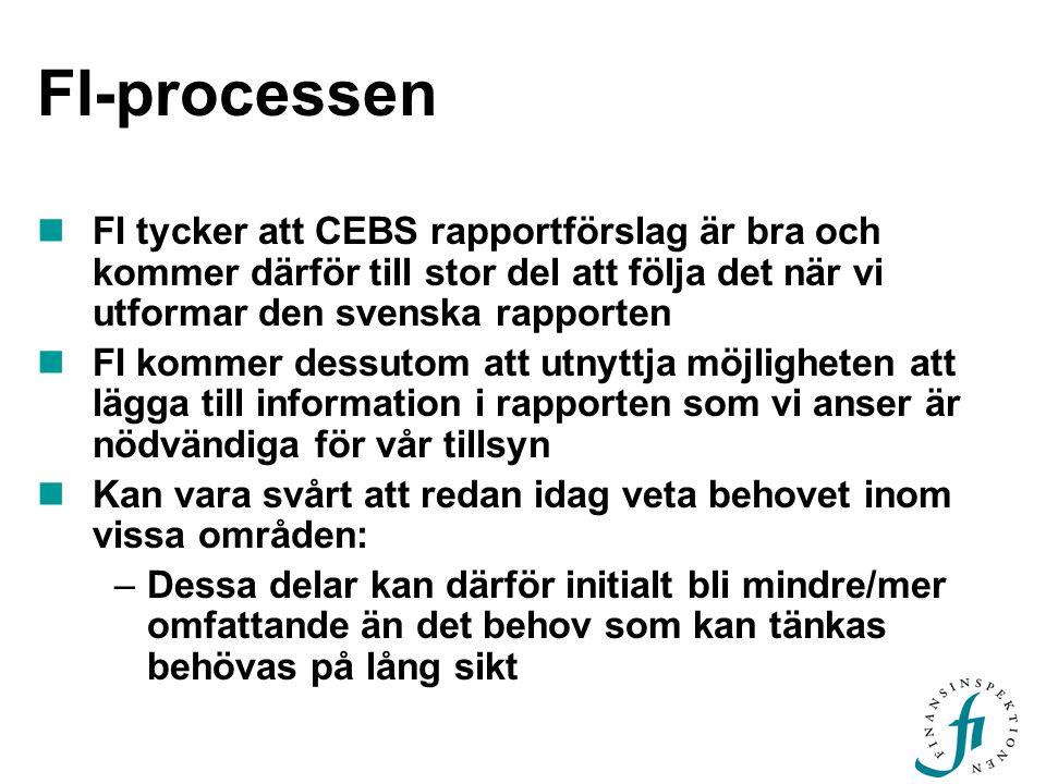 FI-processen FI tycker att CEBS rapportförslag är bra och kommer därför till stor del att följa det när vi utformar den svenska rapporten.